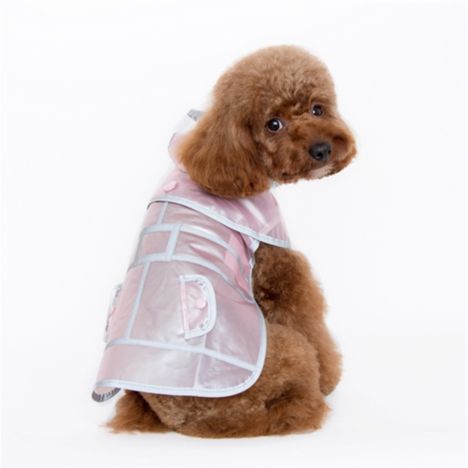 pampered pooch posh puppy boutique