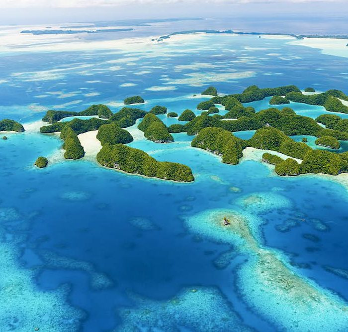 Diving Palau: Beauty And Tragedy In The Remote Pacific