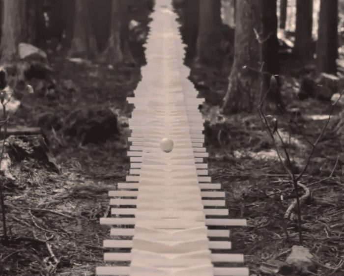 Amazing Mile-Long Xylophone Plays Bach Cantata in Depths of Japanese Forest