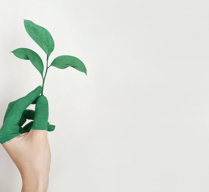 4 Brands Practicing Sustainability In 2021